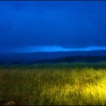 rainstormfield