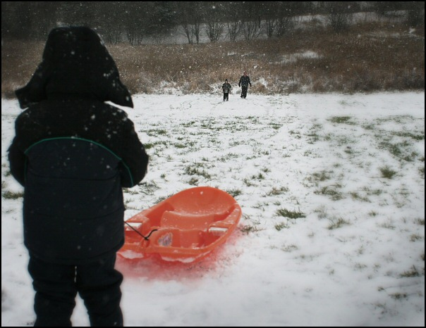 sled2as