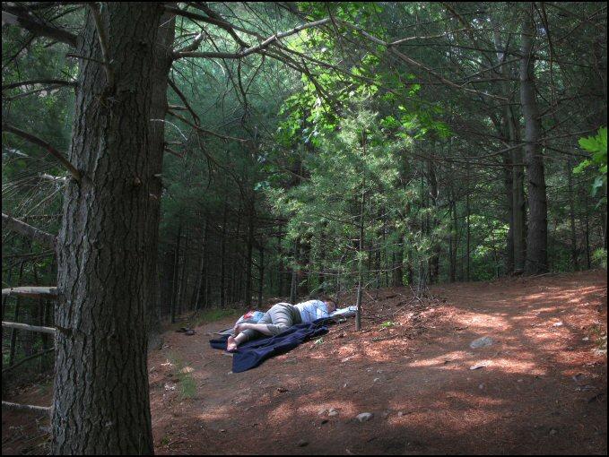 woodssleeperas